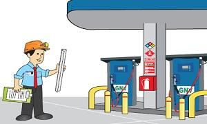 Gas natural gerencia de fiscalizaci n de gas natural for Portal del instalador de gas natural